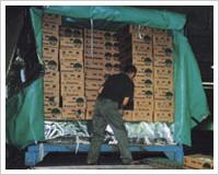 グルメ時代の保冷保温システムのイメージ